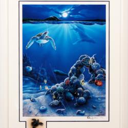 Underwater Turtle with Remark