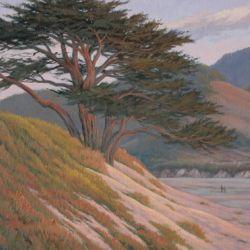 Carmel Mission Pines