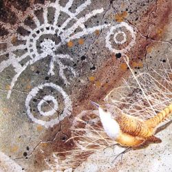 Canyon Wren and Petroglyph